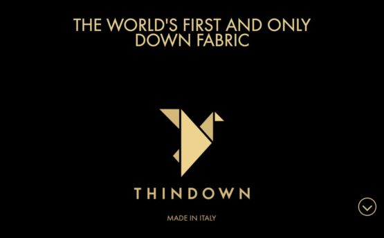 Thindown Fabric
